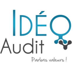IDEO Audit – Forensic